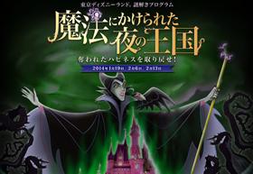 魔法にかけられた夜の王国 奪われたハピネスを取り戻せ!